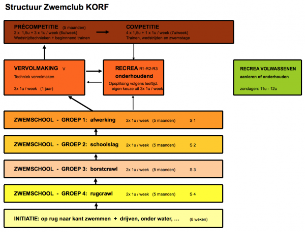 Structuur Zwemclub KORF